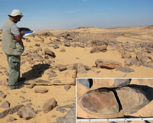 Survey of a probable Predynastic grinding stone quarry. Inserted a typical boat-shaped grinder