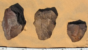Preforms of bifaces in Palaeolithic workshop