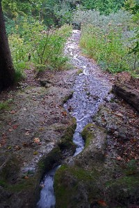 The little brook that sustains Devil's Church