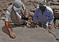 Adel Kelany (right) and Dirk Huyge discussing a rock art panel. Photo: Per Storemyr