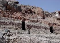The adits of a modern clay mine in Subeira. Photo: Adel Kelany