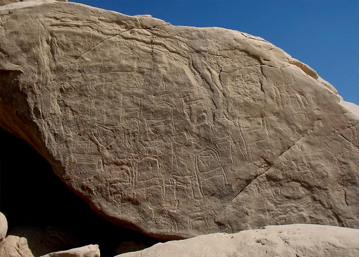 Enormous amounts of Predynastic to recent rock art is also found at Subeira; here ibex & co. Photo: Per Storemyr