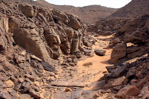 This is also Wadi Abu Subeira: A small side valley, site CAS-2 (or KASS1), with a very rich concentration of Predynastic (3-4.000 BC) rock art. Photo: Per Storemyr