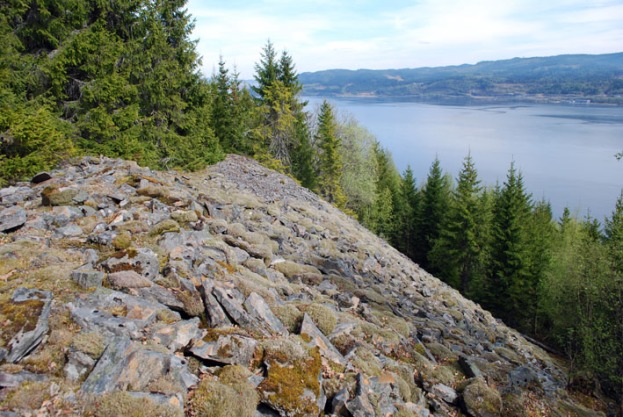 The Almlia quartzite slate quarries about 30 km west of Trondheim. The picture shows one of the great spoil heaps from early-modern production. Photo: Per Storemyr