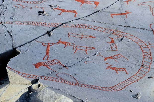 Human with spear apparently killing reindeer within part of the large corral at the panel Bergbukten I at Alta. Beside the human is also an elk. Photo: Per Storemyr
