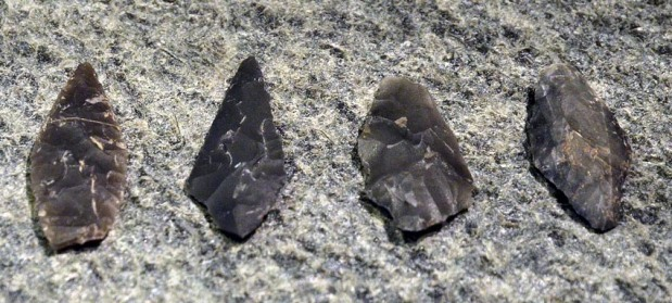 Arrow heads from dark chert, found during excavations of habitation sites, now exhibited at Alta Museum. Photo: Per Storemyr