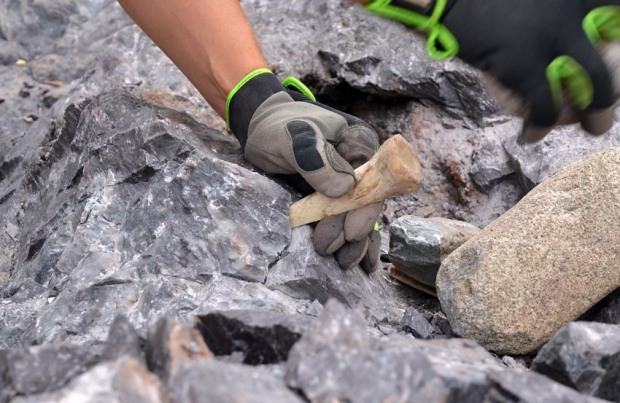 Removing cracked stone by wedging with bone and hammerstone. Photo: Per Storemyr