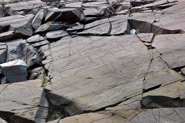 Cracked rock at the Kåfjord Neolithic rock art site in Northern Norway. Photo: Per Storemyr