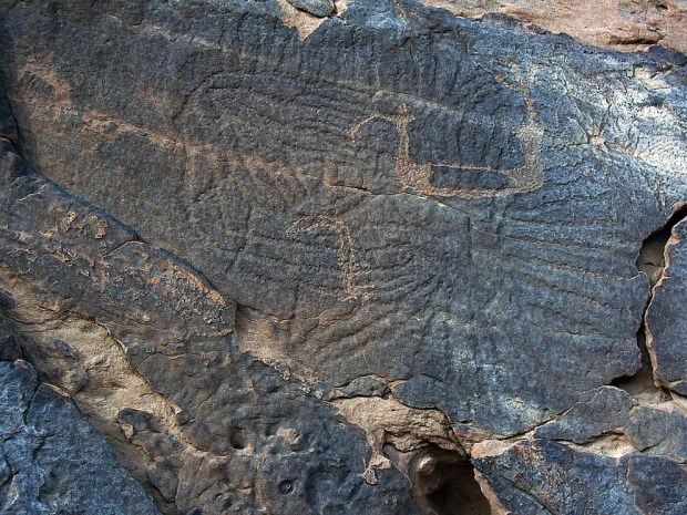 """A complex geometric figure from Wadi Umm Salam (site SAL 12) in the Upper Egyptian Eastern Desert. Site originally found by the Eastern Desert Survey by """"The Followers of Horus"""" in the 1990s. Photo: Per Storemyr"""