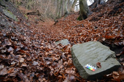 Switzerland: A lost block of sandstone along a beautiful hollow way leading from the quarries at Gurten near the capital Berne. Photo: Per Storemyr.