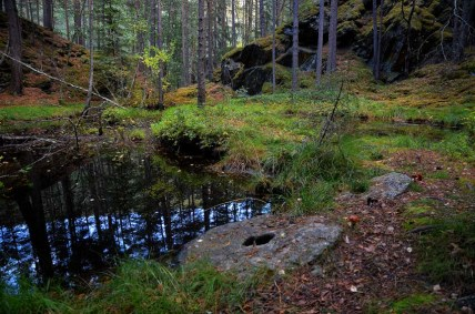 Norway: Another millstone quarry among the impressive range of sites from the Viking Age and Middle Ages. This time it is Toldstadberget in the central, eastern part of the country. Photo: Per Storemyr