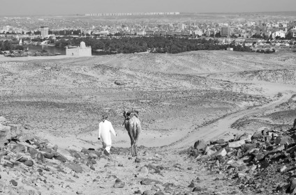 Route of the ancient quarry road that leads from the Gebel Tingar sanctuary to the Nile opposite Elephantine. This road has been heavily destroyed by modern traffic. The large building is the mausoleum of Aga Khan. Photo: Per Storemyr