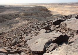 Quarry 1, located on the little hill/plateau in the middle, upper part of the picture, as seen from broken-up slabs and blocks in Quarry 2. View towards the south. Photo: Per Storemyr.