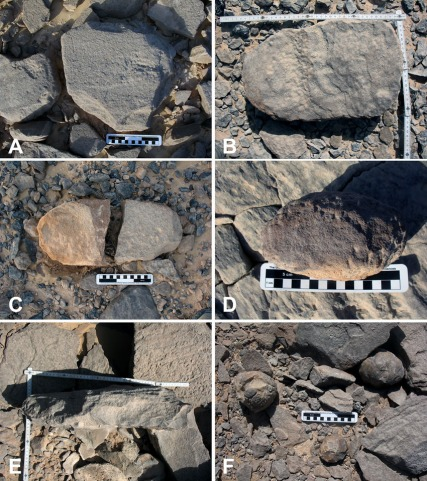 Artefacts in the grinding stone quarries. A) and B) Broken lower grinding stone rough-outs. These are the most common artefacts in the quarries, C) Rare example of elongated, oval rough-out, D) sandstone, E) Photo indicating thickness (ca. 10 cm) of a lower grinding stone rough-out, F) Flint hammerstones in the quarries. Small scale is 15 cm long, folding carpenter's ruler 50 cm in each direction. Photos: Per Storemyr.