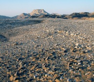 Small area of silicified sandstone work (in the foreground) on the alluvial terrace. Photo: Per Storemyr.