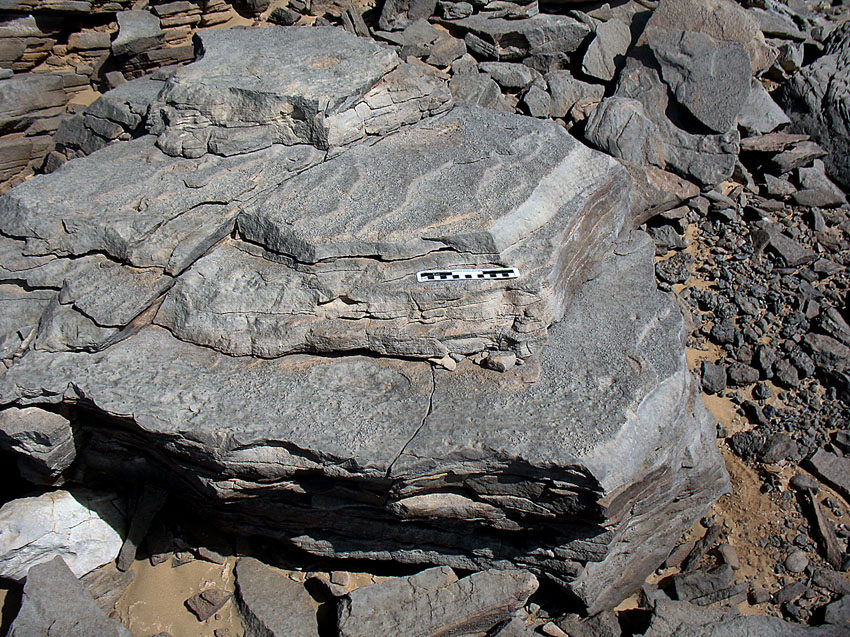 Unworked block indicating how the silicified sandstone splits along bedding planes. Photo: Per Storemyr.