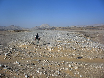 On the way to discovery of the first reported prehistoric grinding stone quarry in the Egyptian Sahara. Dirk Huyge walks the stony desert. Photo: Per Storemyr.