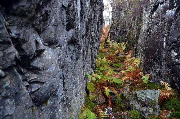 Stakaldeneset diabasbrudd - steinalderens øksebrudd ved Florø. Foto: Per Storemyr