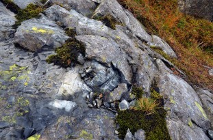 Spalled rock in the Siggjo Neolithic rhyolite quarries. Fire was a work. Photo by Per Storemyr