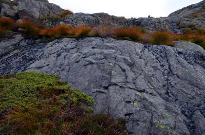 Convex traces of firesetting in the Siggjo Neolithic rhyolite quarries. Photo by Per Storemyr