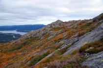Overview of the Siggjo Neolithic rhyolite quarry at Bømlo, Western Norway. Photo by Per Storemyr