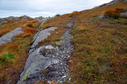 Mountain path on a waste heap at the Siggjo rhyolite quarry. Photo by Per Storemyr