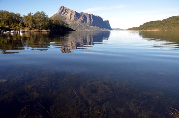 Er det en kvernstein der i dypet eller er det ikke? Den ligger i alle fall i en av de viktigste utskipningshavnene for kvernstein i vikingtid og middelalder - og sikkert også senere: i buktene ved Myklebustneset i Hyllestad. Og bakom ruver Lihesten. Foto: Per Storemyr