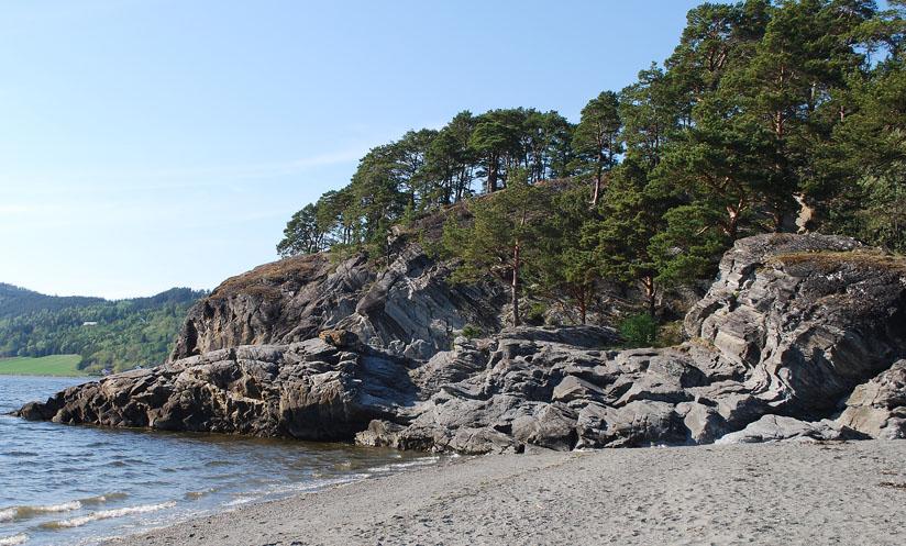 Steinbruddet i Storvika på Sutterøya. Vi ser hvordan det er hogd ut stein i den lett skrånende ryggen ut mot fjorden (her ved flo). Det er imidlertid noe usannsynlig at dette kan være et middelalderbrudd, da middelvannstand på den tiden kan ha stått 4-5 m høyere enn i dag. Foto: Per Storemyr.