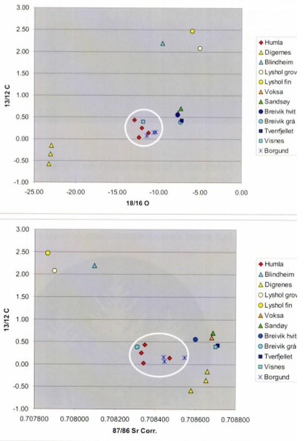 Isotopanalyser (O, C og Sr) av ulike møremarmorer plottet mot hverandre for å komme på sporet av de enkelte marmorenes proveniens. Vi ser at marmor fra Borgund (blått kryss) plotter nær marmor fra forekomstene på Humla (rød). Dette er de nærmeste forekomstene til Borgundkaupangen. Analyser og figurer: Tom Heldal/NGU