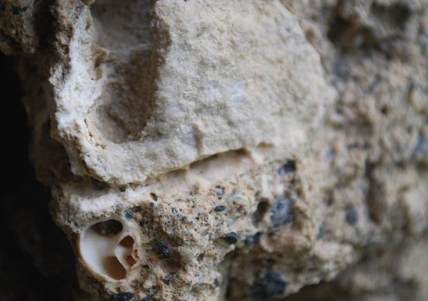 Ubrent marmorbit (over) og skjell i mørtel (under), kjernemørtel, Albanuskirken. Foto: Per Storemyr