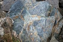 Slik ser den typiske klebersteinen på Vestre Åmøy ut: Skifrig, nokså mørk og med brune karbonatårer. Foto: Per Storemyr