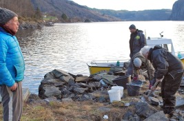 Sveinung, Oddvin og Torbjørn hogger opp marmor på kaia i Smilla, Jostein, som bor på Smilla, følger med. Foto: Per Storemyr
