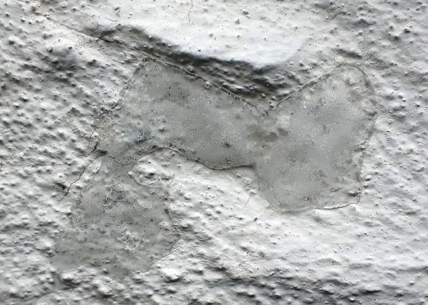 Tilsvarende islinse som i bildet over, her over hvittingen på Fastings Minde.